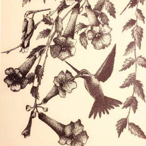 Feathers Alight